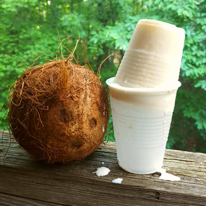 Limber de Coco- Coconut